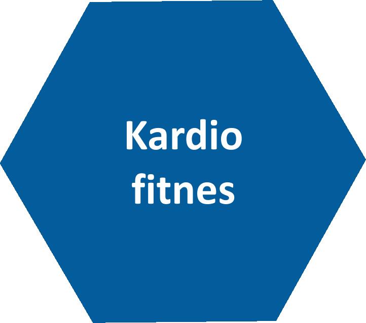Kardio fitnes